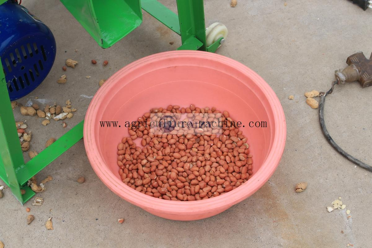 Peanut-Sheller06