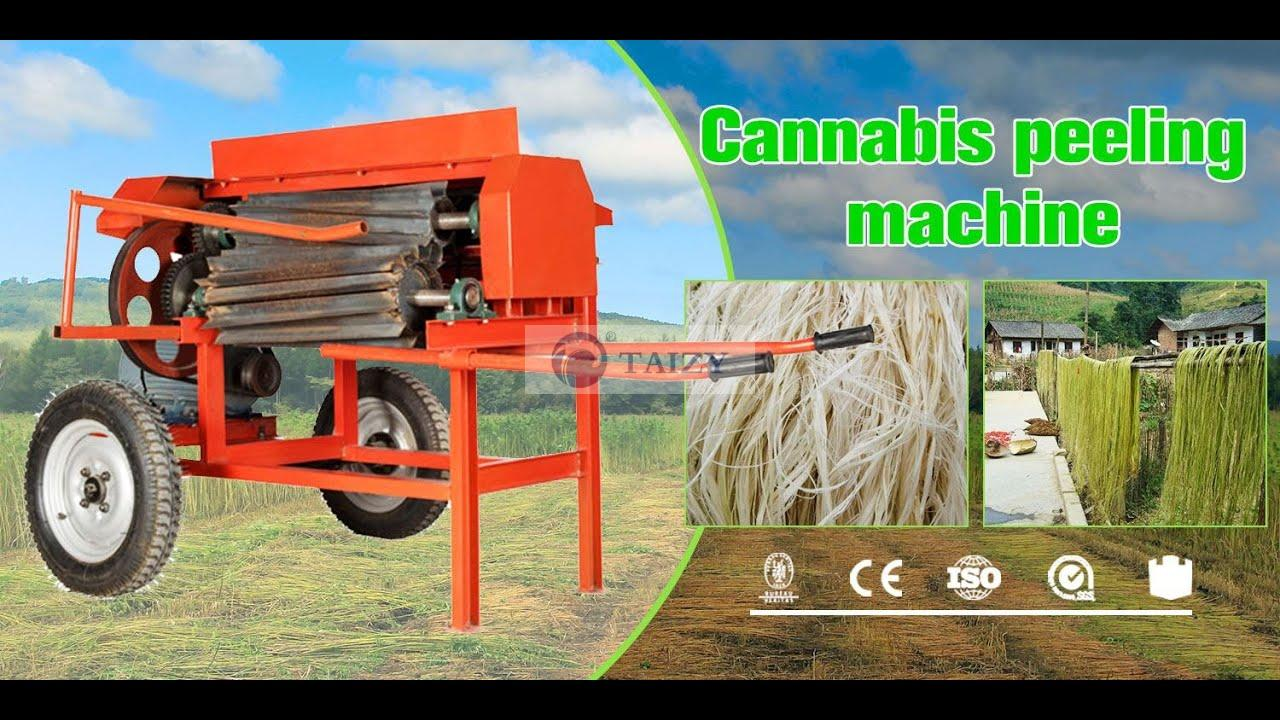 Kenaf Jute Hemp Cutter Extractor Machine Kenaf