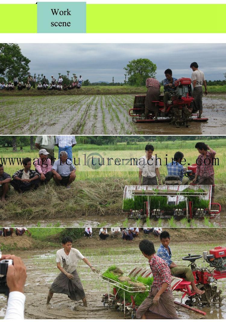 8-row-rice-transplanter3-1