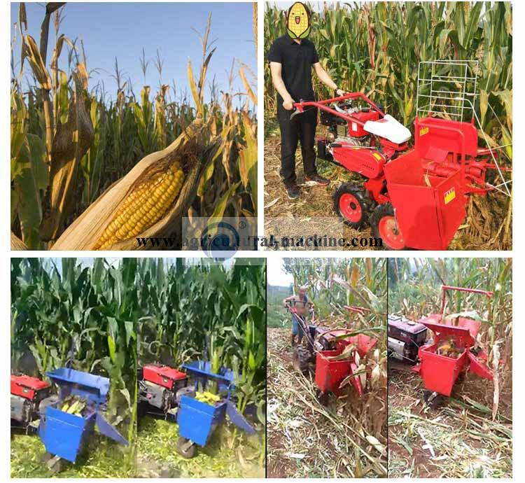 manual maize cutter