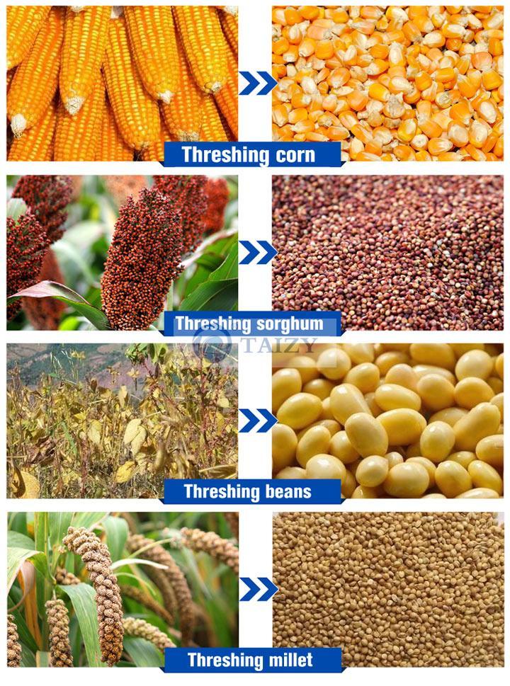Grain Thresher