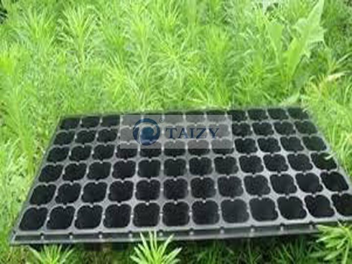 nursery seedling tray